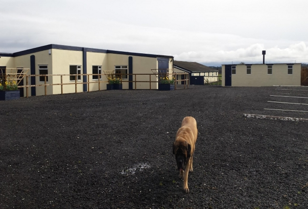 Norbreck Canine Centre. The North East Dog Training & Activity Centre for Northumberland & Newcastle